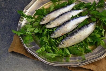 Ryba w Kołobrzegu